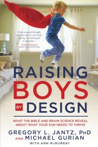 Book Cover - Raising Boys by Gods Design
